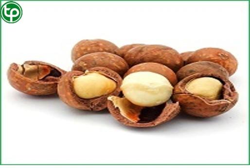 Địa chỉ bán hạt macca tại tphcm ngăn ngừa xơ vữa động mạch