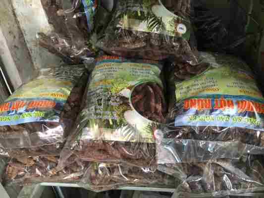bán dược liệu chuối hột rừng tận Phú Yên giá tốt