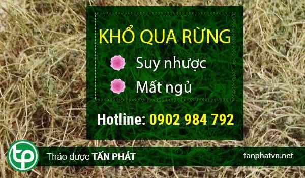 Ở đâu mua bán khổ qua rừng tại Bình Thuận giá tốt