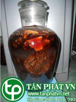 cách sử dụng Của trái nhàu được bán tại Hà Nội uy tín