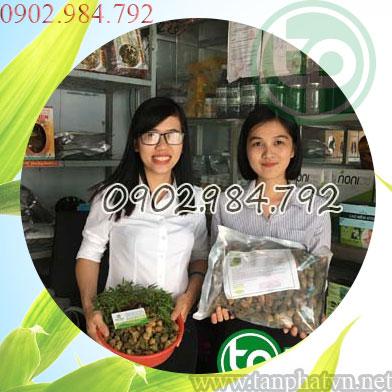 Địa chỉ mua bán khổ qua rừng tại Huyện Thường Tín