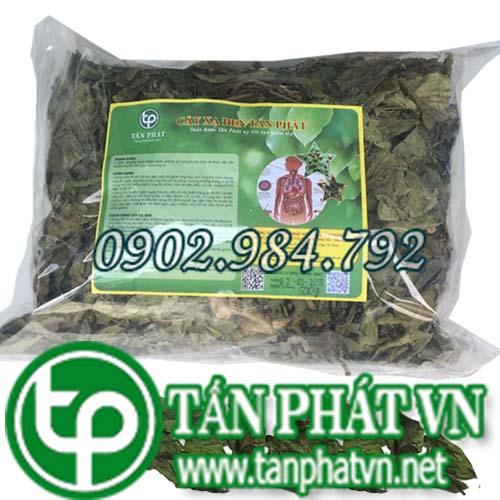 Link sản phẩm cây xạ đen tanphatvn năm 2019