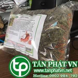 Ở đâu mua bán chè dây tại Tuyên Quang giao hàng nhanh