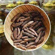 Ở đâu mua bán chuối hột rừng tại Bình Thạnh uy tín