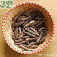 Ở đâu mua bán chuối hột rừng tại quận 3 chất lượng