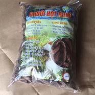 Ở đâu mua bán chuối hột rừng tại quận 5 giao hàng nhanh